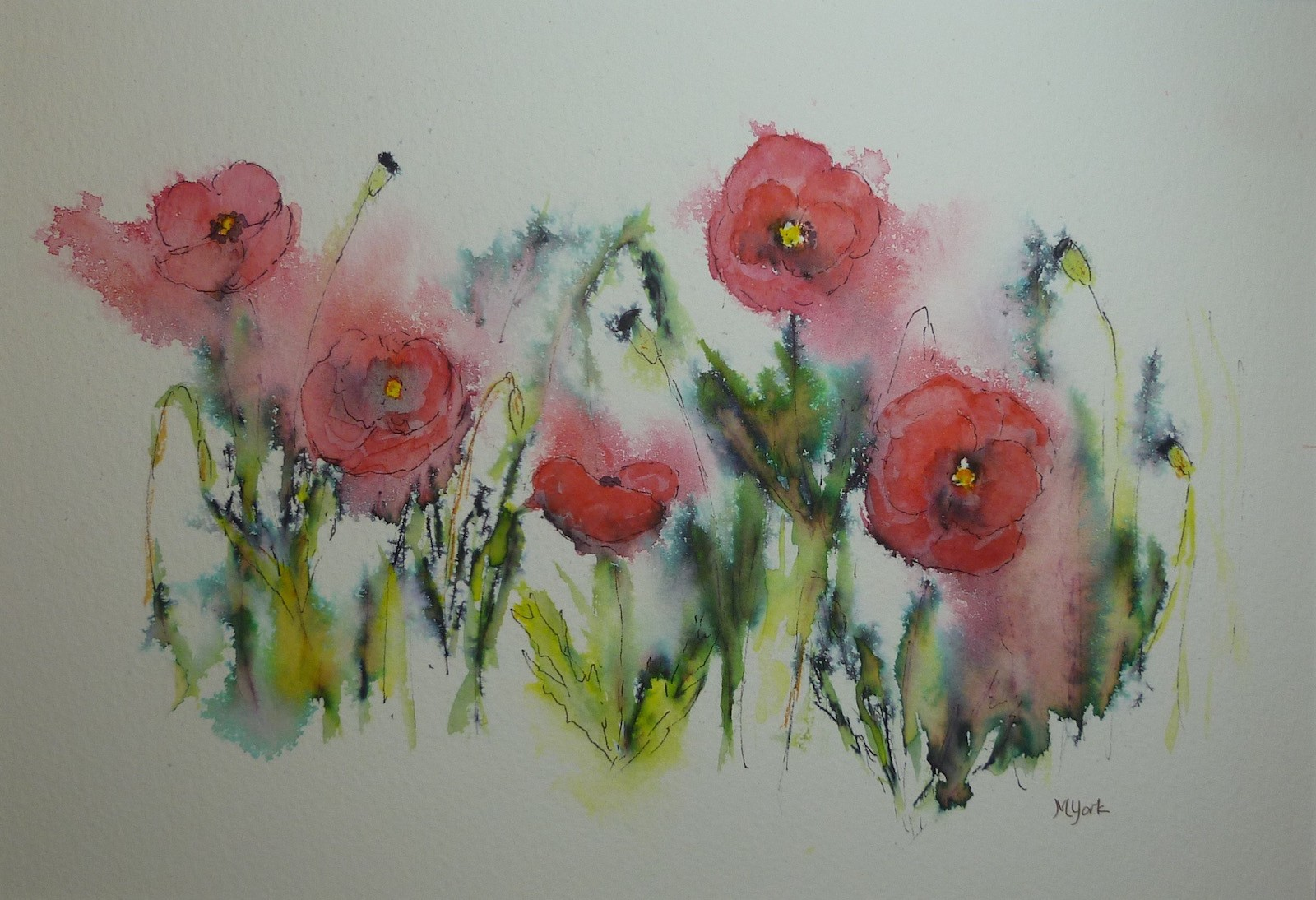 Poppies of the Ariege