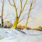 Dibden Inclosure in snow