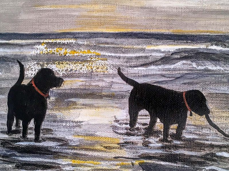 The Brothers - dogs playing in the sea